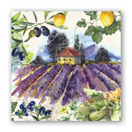 MDW Cocktail Napkins - Campagna