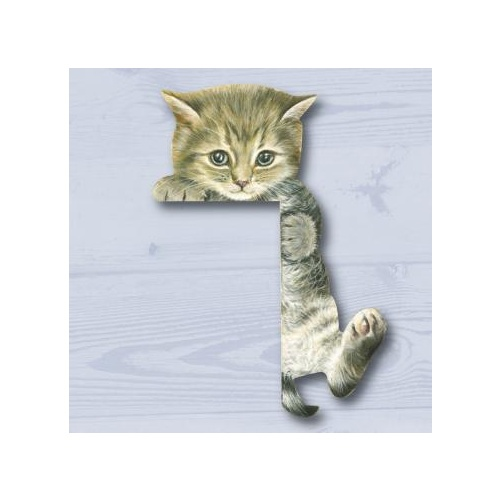Padblock Cat Corner Climbing Kitten Grey