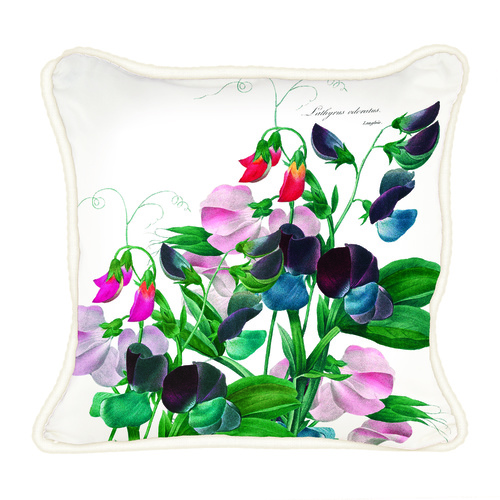 MDW Decorative Square Pillow - Sweet Pea
