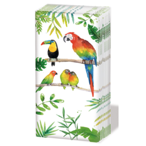 PPD Sniff Tissues - Tropical Birds